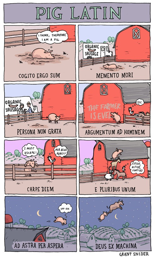 vignette di Grant Snider