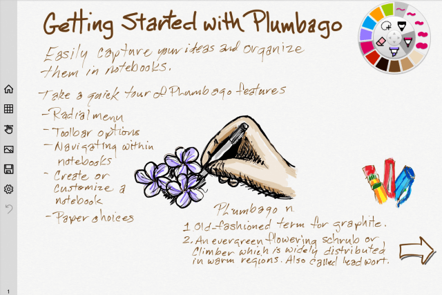 Plumbago n. 1 old-fashioned term for graphite 2 an evergreen flowering schrub [sic] or climber which is widely distributed in warm regions. Also called leadwort.