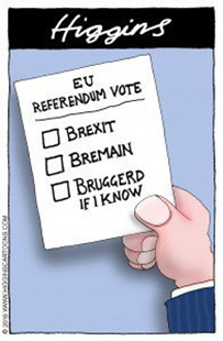 EU REFERENDUM VOTE: ☐ BREXIT  ☐ BREMAIN  ☐ BRUGGERD IF I KNOW
