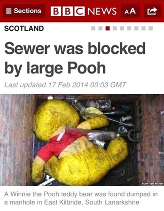 Sewer was blocked by large Pooh