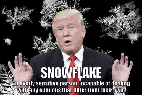 SNOWFLAKE: an overly sensitive person, incapable of dealing with any opinions that differ from their own.