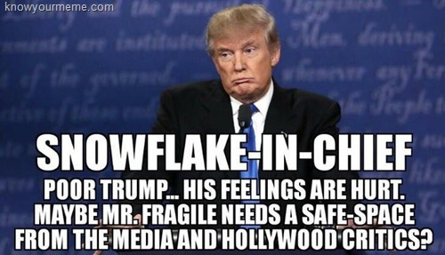Snowflake-in-Chief: poor Trump… his feelings are hurt. Maybe Mr. Fragile needs a safe sapace from the media and Hollywood critics?
