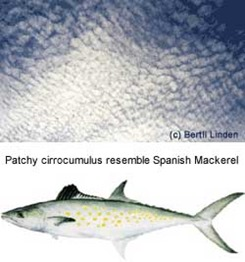 Patchy cirrocumulus resemble Spanish Mackerel