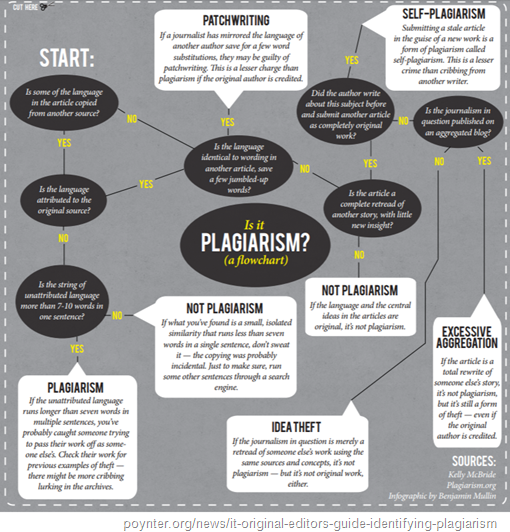 diagramma di flusso: plagiarism, self-plagiarism, patchwriting, idea theft