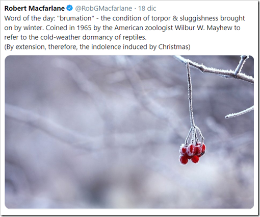 "Tweet di Robert Macfarlane – Word of the day: ""brumation"" - the condition of torpor & sluggishness brought on by winter. Coined in 1965 by the American zoologist Wilbur W. Mayhew to refer to the cold-weather dormancy of reptiles. (By extension, therefore, the indolence induced by Christmas)"
