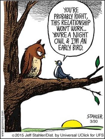 """Vignetta con allodola che dice a gufo: """"You're probably right, this relationship won't work… You're a night owl and I'm an early bird"""""""
