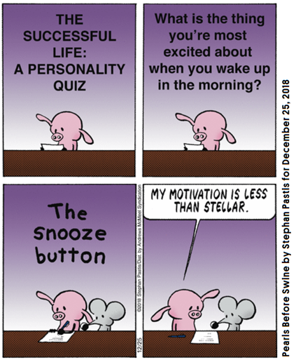 "Striscia di Pearls Before Swine. Pig risponde al test ""The successful life: a personality quiz"". Domanda: ""What is the thing you are most excited about when you wake up in the morning?"" Risposta: ""The snooze button""."