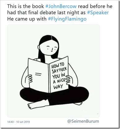 Immagine di bambina che legge libro intitolato How to say fuck you in a nice way. Testo tweet: This is the book #JohnBercow read before he had that final debate last night as #Speaker of the HoC. He came up with #FlyingFlamingo.