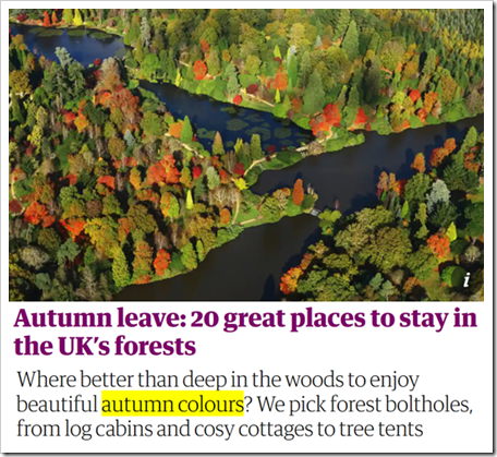 Autumn leave: 20 great places to stay in the UK's forests. Where better than deep in the woods to enjoy beautiful autumn colours? We pick forest boltholes, from log cabins and cosy cottages to tree tents