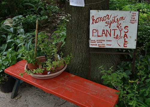 Honor system. Plants for sale: leave offering under front door.