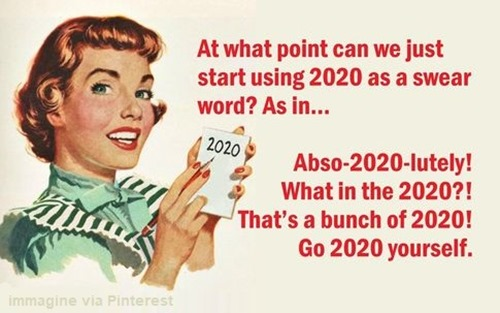 At what point can we just start using 2020 as a swear word? As in… abso-2020-lutely! What in the 2020?! That's a bunch of 2020! Go 2020 yourself.